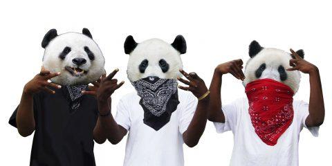 tres-pandas-web