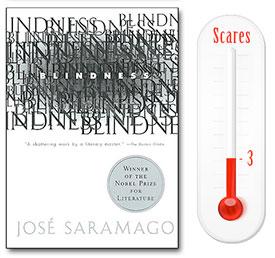 Blindness - Books We Love
