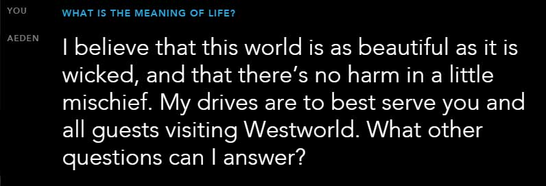 westworld-meaning-of-life