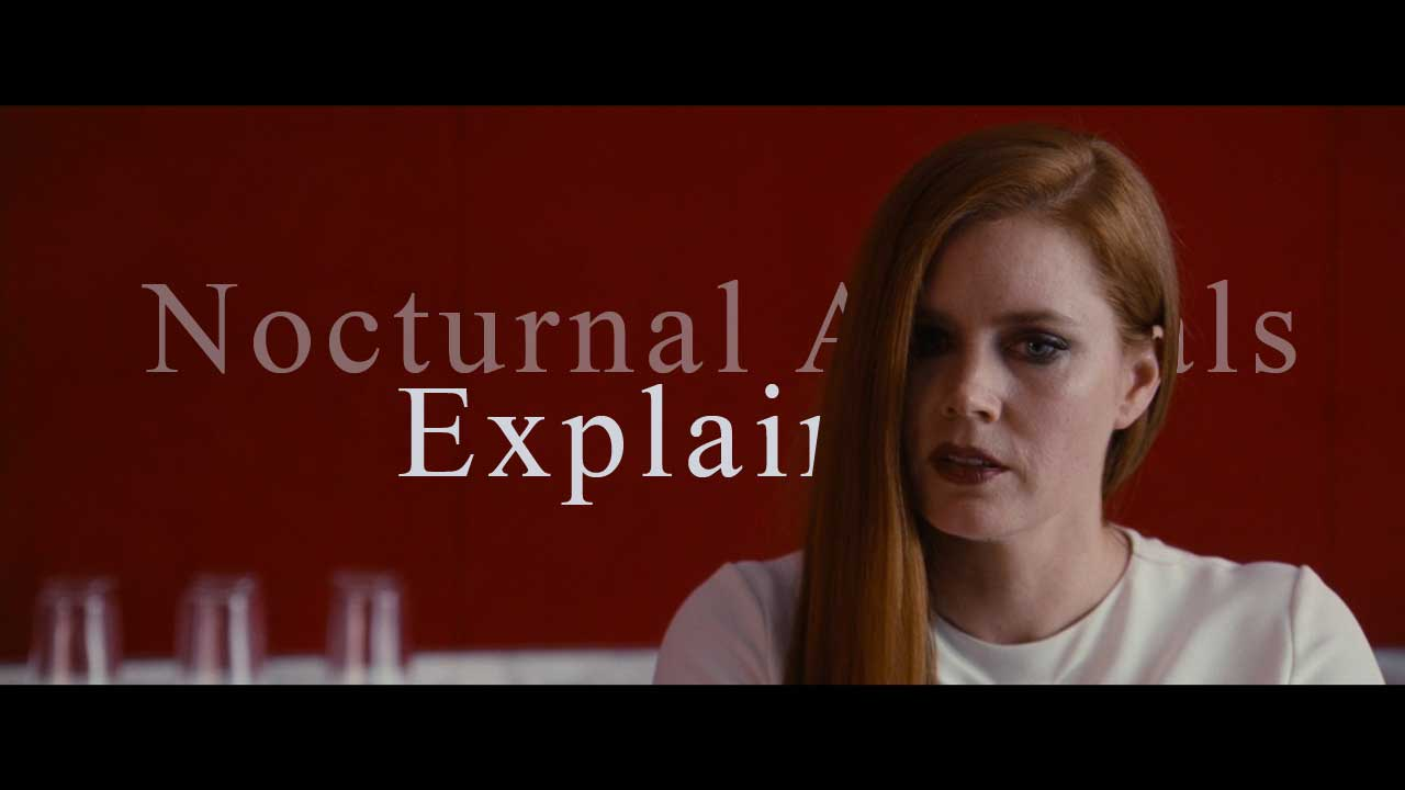 Amy Adams Nude In Nocturnal Animals nocturnal animals completely explained - taylor holmes inc.